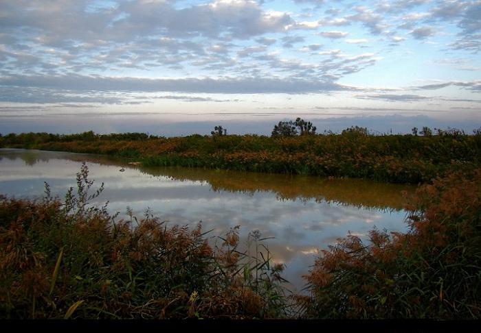 биологическая очистка сточных вод это