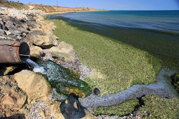 условия сброса сточных вод