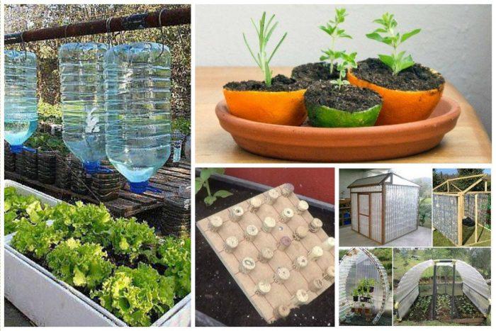 лайфхаки для сада и огорода
