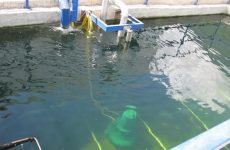 химическая очистка воды