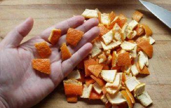 апельсиновые корки как удобрение