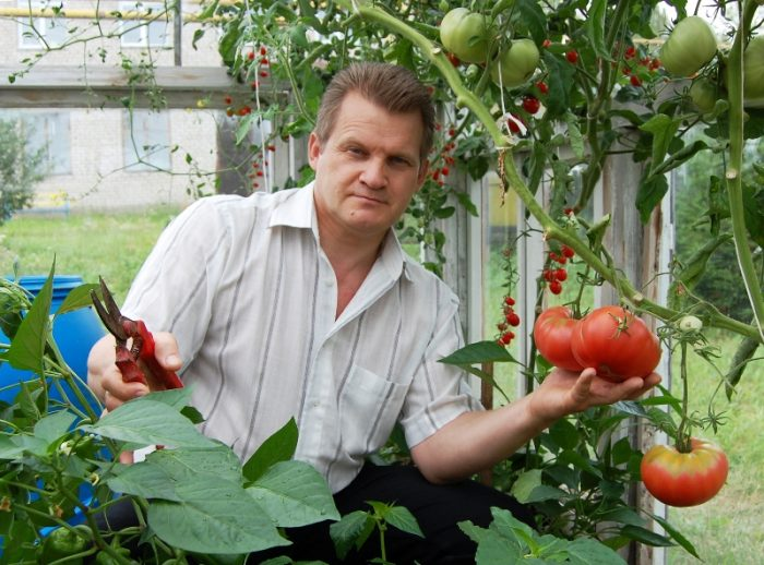опрыскивание томатов аспирином