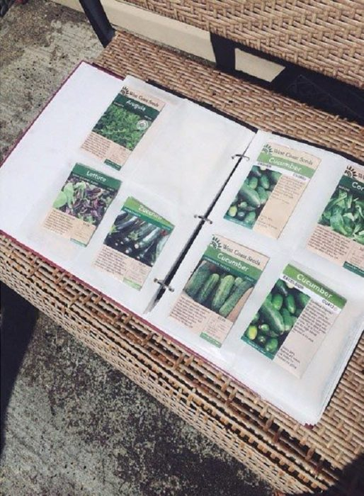семена в альбоме для фотографий
