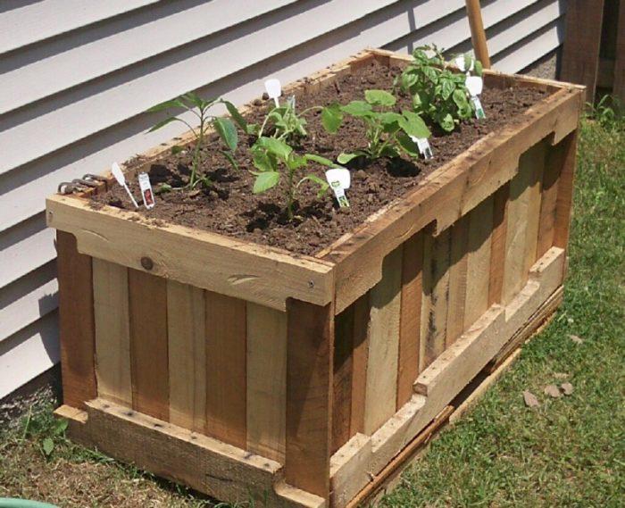 деревянный ящик для рассады