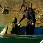 где можно ловить рыбу