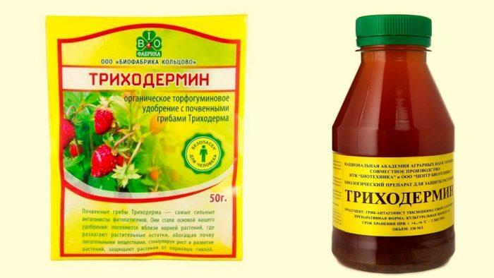 триходермин для лечения огурцов