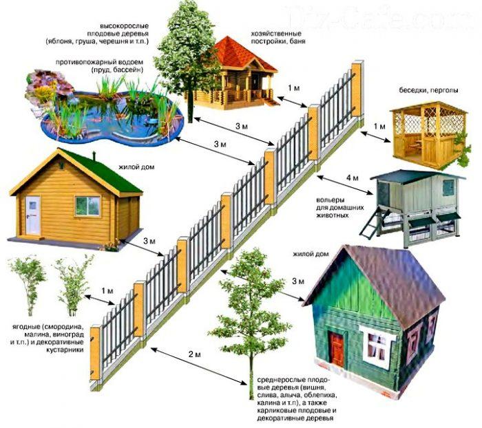 расположение домов на участке