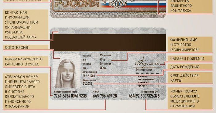пример электронного паспорта
