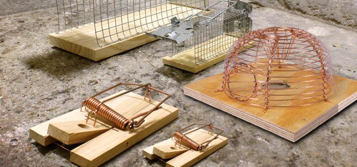 ловушки для мышей