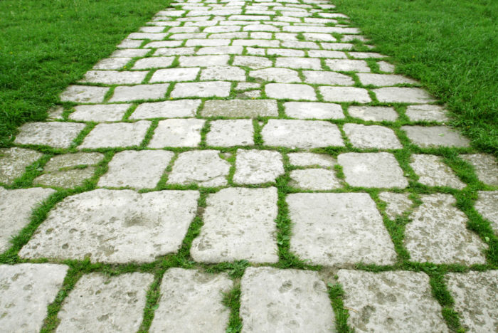 трава между плитками