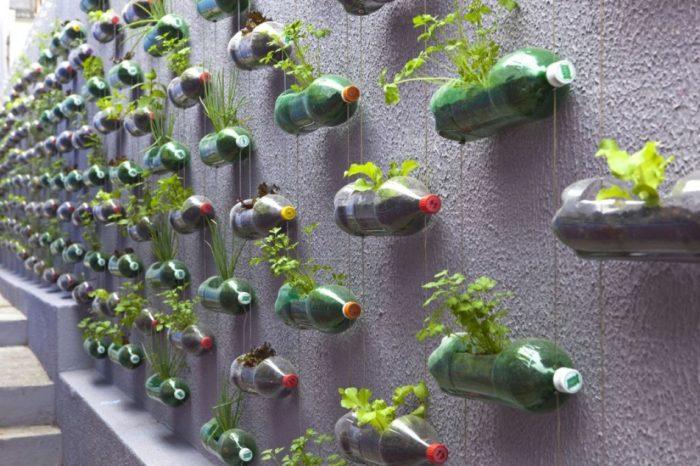 Для растений из пластиковых бутылок