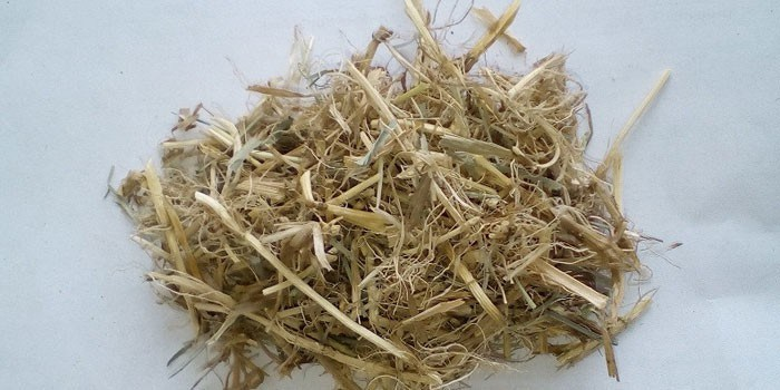 сушеные корни пырея