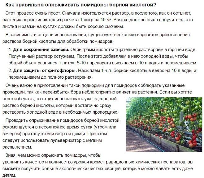 подкормка помидоров бором