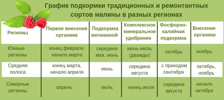 график подкормки малины