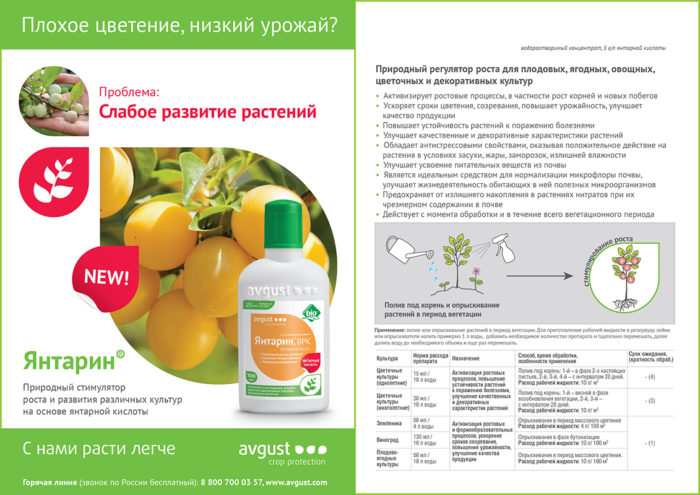 Янтарин для подкормки растений