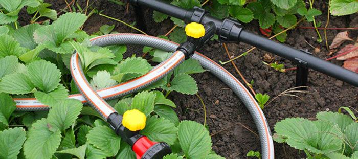 разводка труб на участке для полива