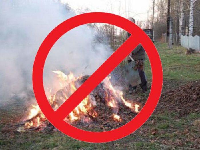 Запрет на сжигание мусора на участке
