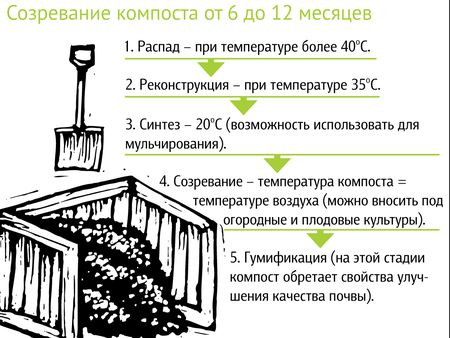 стадии созревания компоста