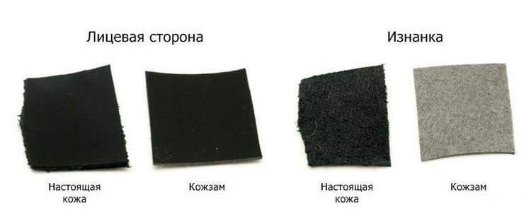кожа и козжаменитель