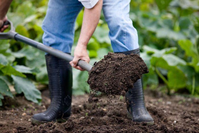 Как защититься от мозолей при перекапывании огорода