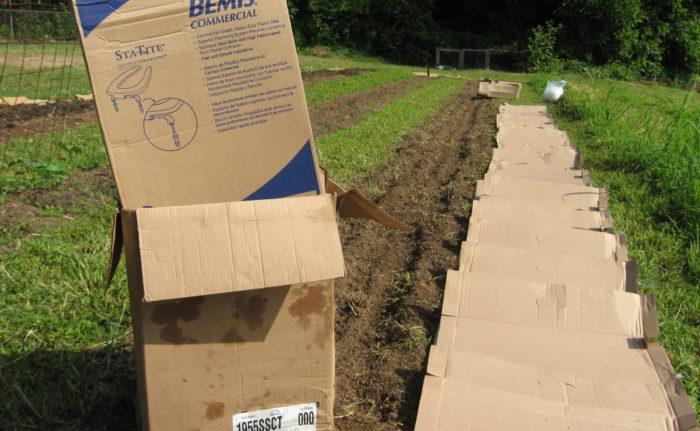 Как использовать картон на даче