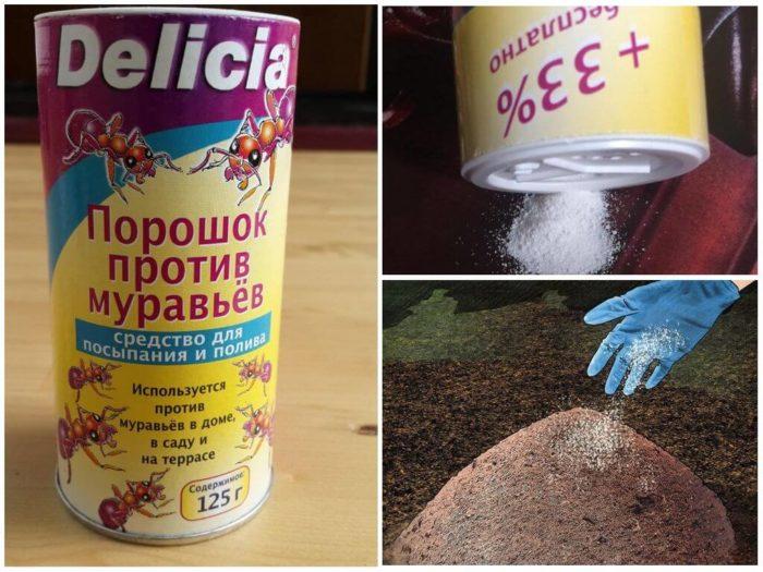 Delicia от муравьев