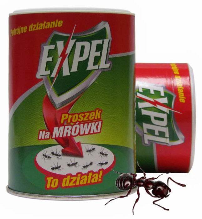 Expel от муравьев