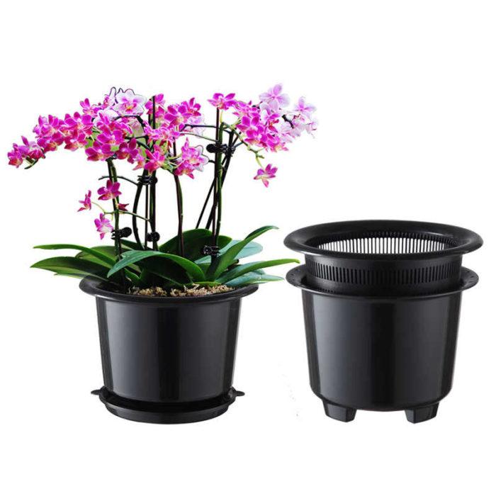 Как выбрать горшок для домашней орхидеи