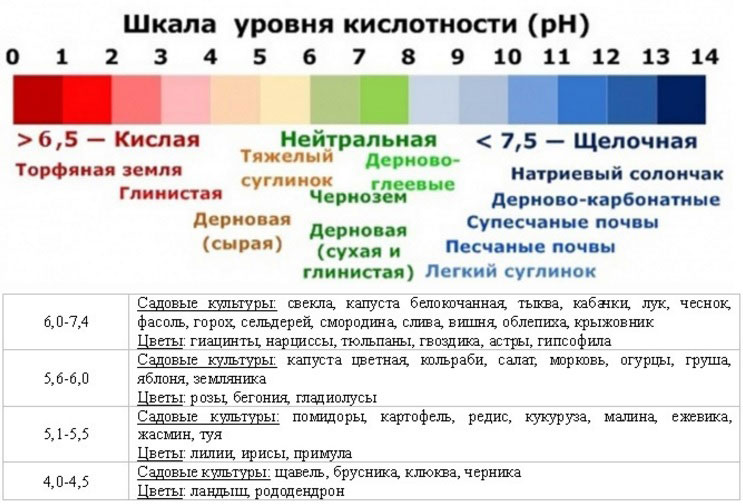 уровни кислотности почвы