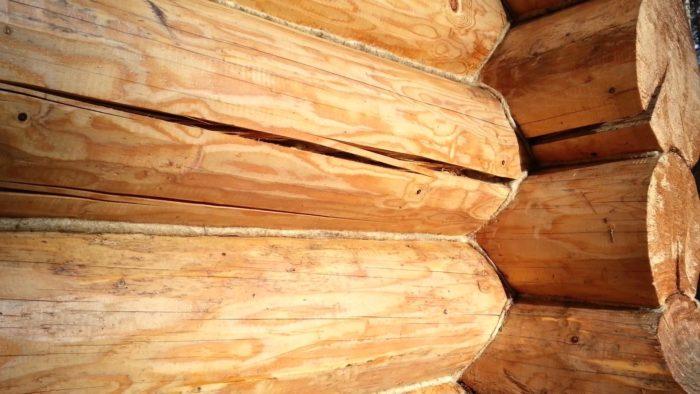 Трещины в древесине