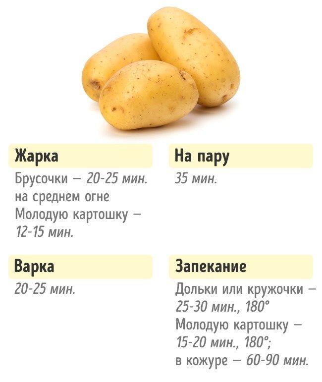 сколько по времени варить картошку