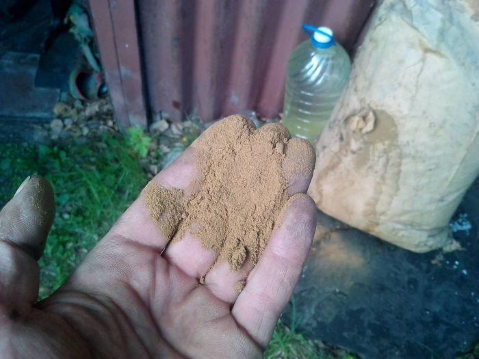 опыливание растений табачной пылью