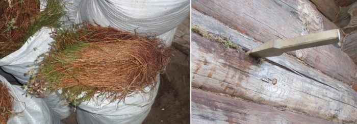 Заделка трещин в древесине мхом