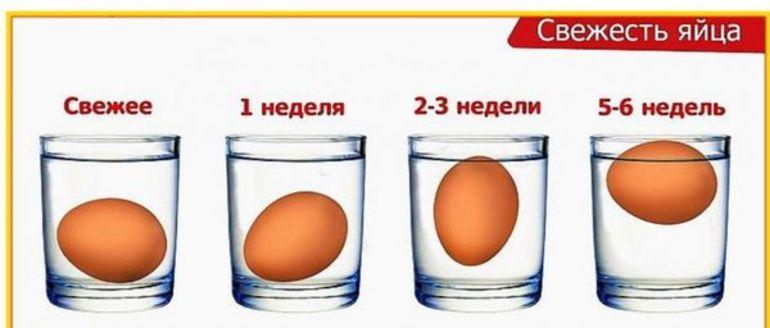 Проверяем свежесть яйца в домашних условиях