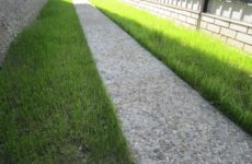 Дорожки из дренажного бетона