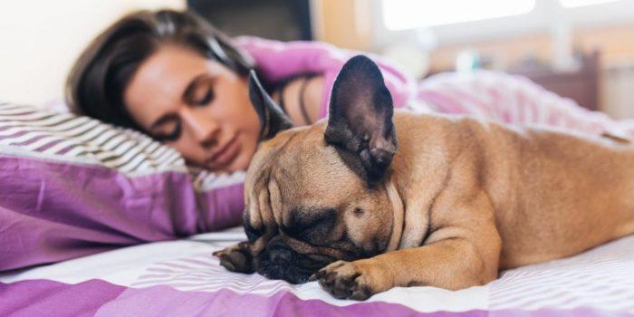 Спать с домашними питомцами