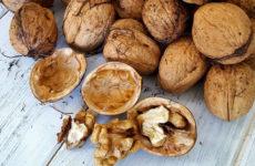 грецкие орехи от старения