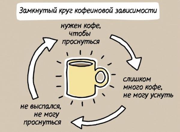 круг кофеиновой зависимости